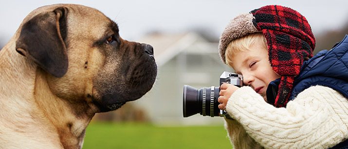 Tips On How To Capture Photographs Of Your Pets