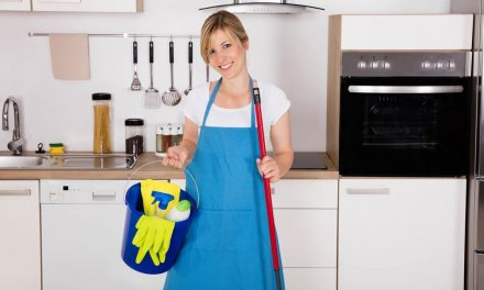 Professional Care and Maintenance Tips for Home Appliances