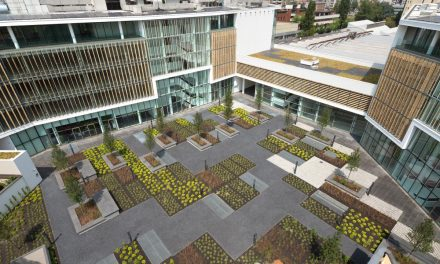 Let your desire to find the best solution for building a rooftop apartment